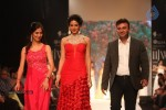 Celebs Walks the Ramp at IIJW 2013 Day 4 - 21 of 129