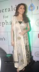 Madhuri Dixit at Emeralds for Elephants Launch - 8 of 29