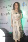 Madhuri Dixit at Emeralds for Elephants Launch - 18 of 29