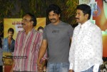 Bindaas Movie Success Meet - 13 of 36