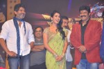 Legend Movie Audio Launch 04 - 15 of 117