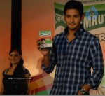 Mahesh Babu Launches Amrutanjan Strong Pain Balm  - 7 of 12