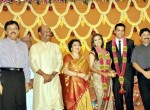 Rajinikanth Daughter Marriage Reception Photos  - 3 of 69