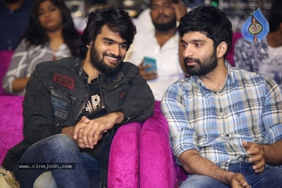 RX 100 Movie Audio Launch - 11 of 42