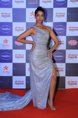 Star Screen Awards 2019 - 12 of 37