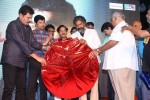 Vikram I Movie Audio Launch 04 - 175 of 224