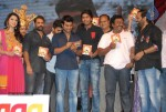 Yamudiki Mogudu Movie Audio Launch - 134 of 139