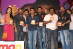 Yamudiki Mogudu Movie Audio Launch - 137 of 139
