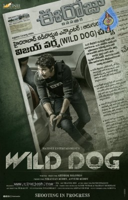 Nagarjuna Wild Dog First Look