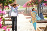 Betting Bangarraju Movie Stills - 2 of 22