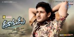 Dookudu Movie Wallpapers - 14 of 18