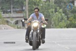 Mogudu Movie New Stills - 2 of 4