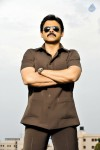 Venky Bodyguard Movie Stills - 2 of 5