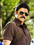 Venky Bodyguard Movie Stills - 3 of 5