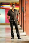 Venky Bodyguard Movie Stills - 4 of 5