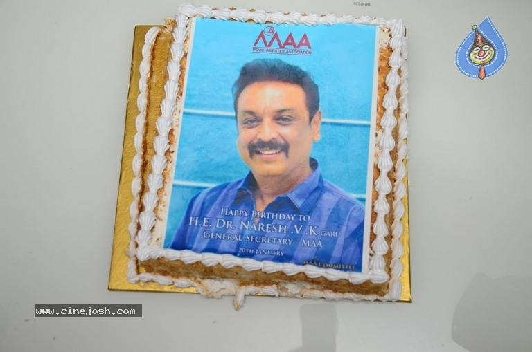 Naresh Vijaya krishna Birthday Celebrations 2019 - 12 / 56 photos