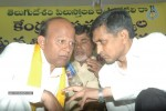 NTR and Political Leaders at Chandrababu Indefinite Fast - 20 of 74