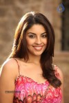 Richa Gangopadhyay Spicy Photos :18-05-2013
