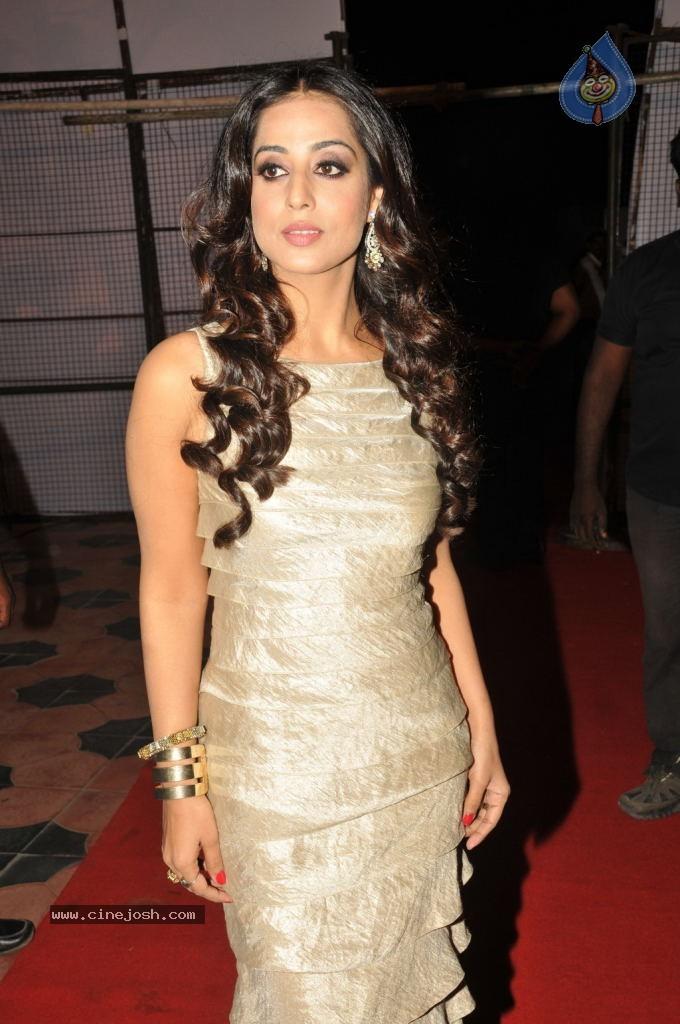 Mahi Gill Long Hair Hot Pictures ~ Hot Actress Photo Gallery