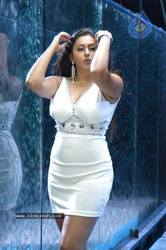 namitha hot n spicy pics cinejosh exclusive   photo 49 of 101