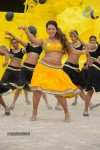 Ester Noronha New Hot Photos - 18 of 90