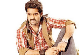 'Brindaavanam' with Jr NTR beginning today