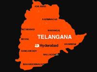 Telangana Liberation Day celebrated