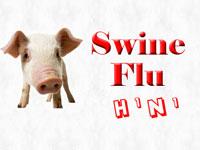 One more dies of swine flu