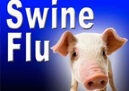 swine flu deaths in India, toll raises to 300