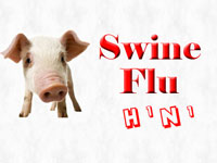 Two more  people died due to swine flu