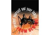 Govt should  bear  all the  expenses of  dengue patients