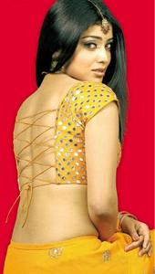 Shriya set her eyes on Hollywood.