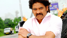 Nag Fans to become active again