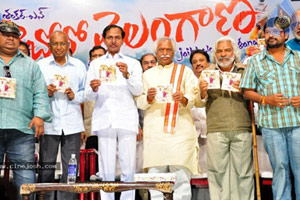 Only few vested commercial interests against Telangana: KCR