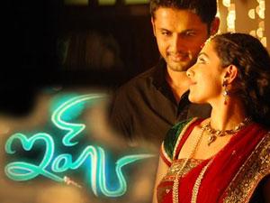 High Demand for Kalyan's 'Love'