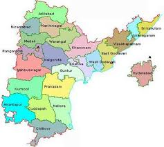 Seemandhra leaders bat for united state