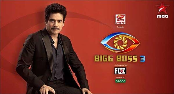 Bigg Boss 3 Telugu Winner