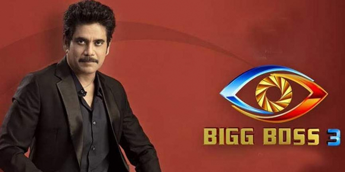 How Will Bigg Boss 3 Controversies Help The Show?