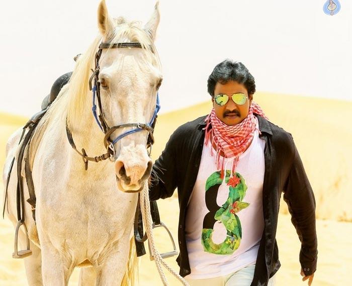 Jakkanna Is Crucial Movie For Sunil