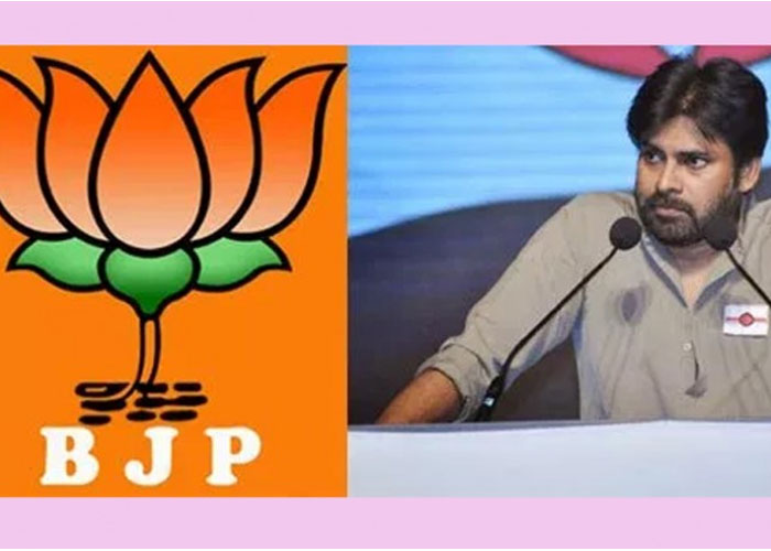 Janasena Activists Should Criticise Pawan Not Media