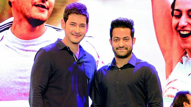 Mahesh Fans Escaped! Poor NTR Fans Criticized!