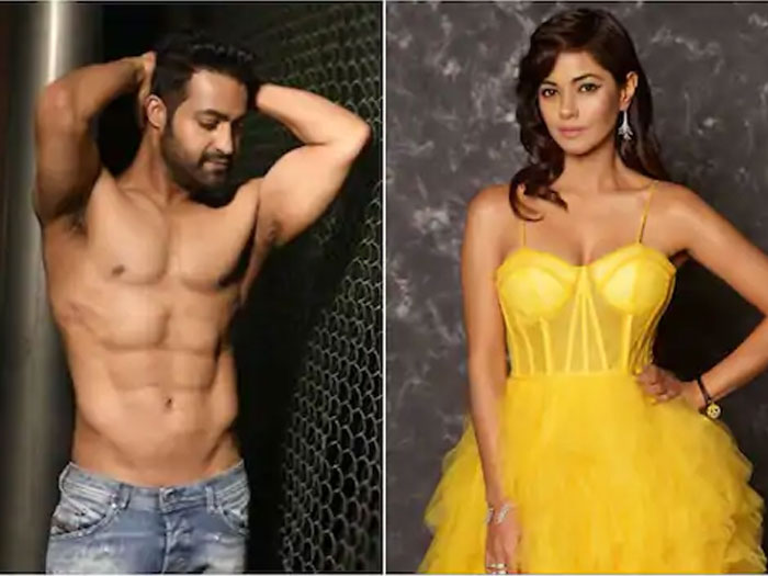 Meera Chopra Complains Cyber Crime on NTR Fans