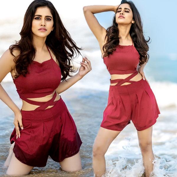 Nabha Natesh Latest Hot Pics