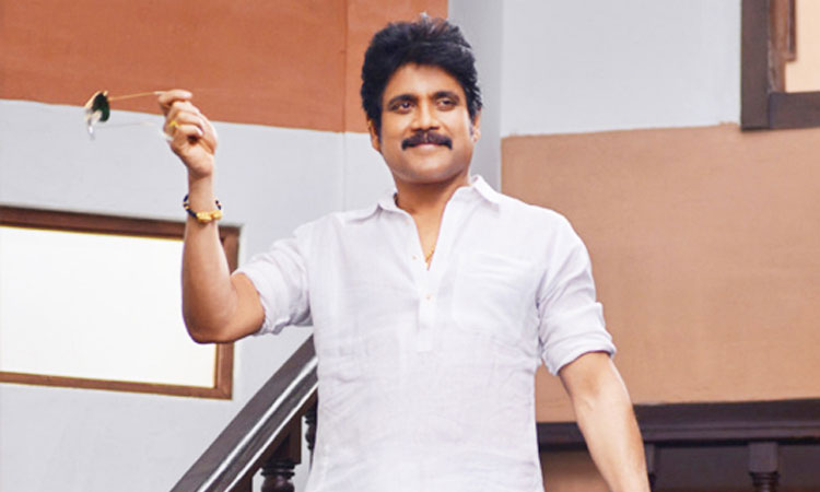 Nagarjuna's Bangarraju on Cards