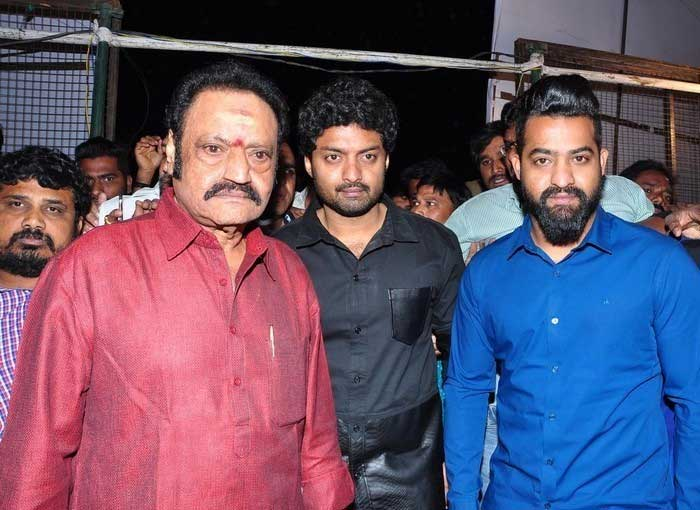 NTR and Harikrishna to Dominate AP Politics in 2019?