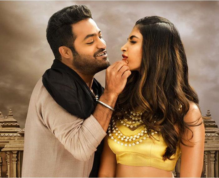 Pooja Hegde to Romance NTR