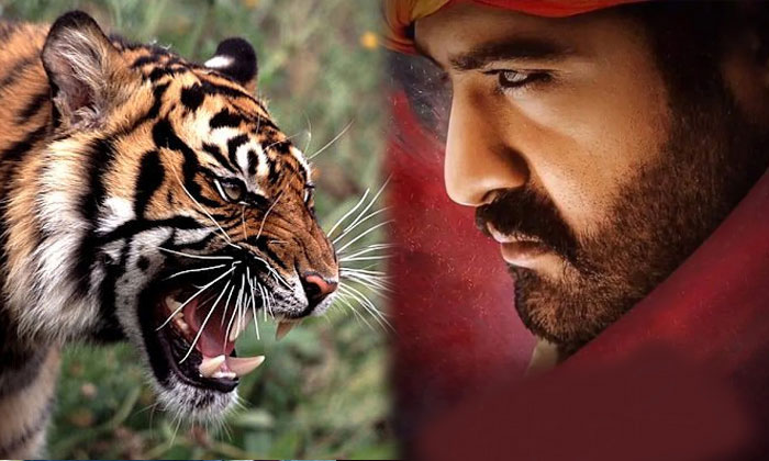 RRR: NTR Gets It! But Charan Can't?