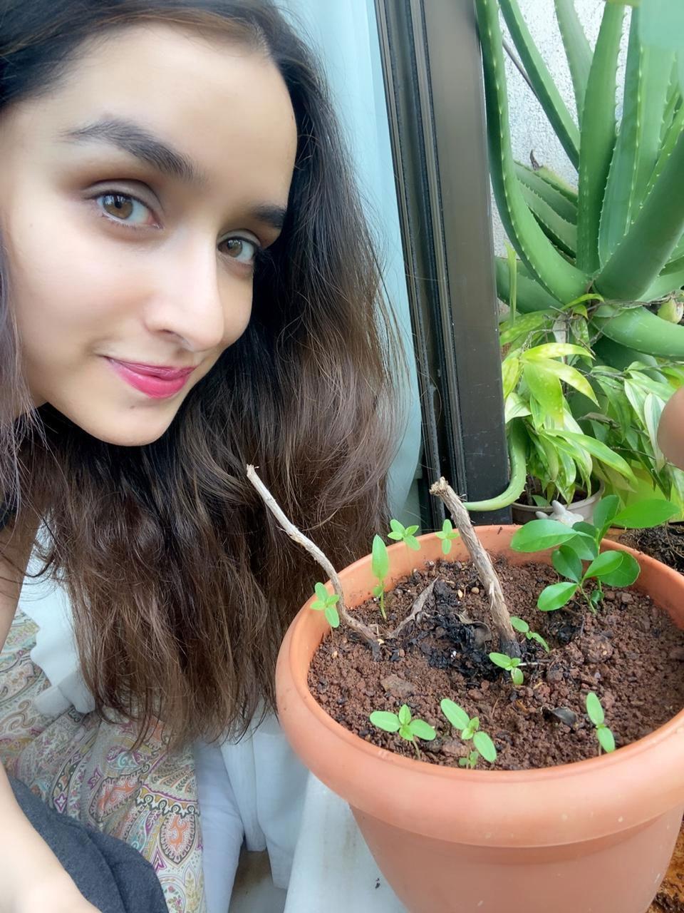 Shraddha Kapoor Green India Challenge