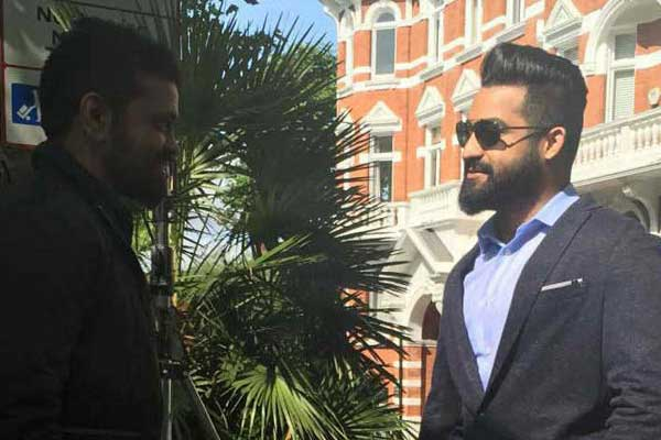 Sukumar's Perfection for NTR's Film