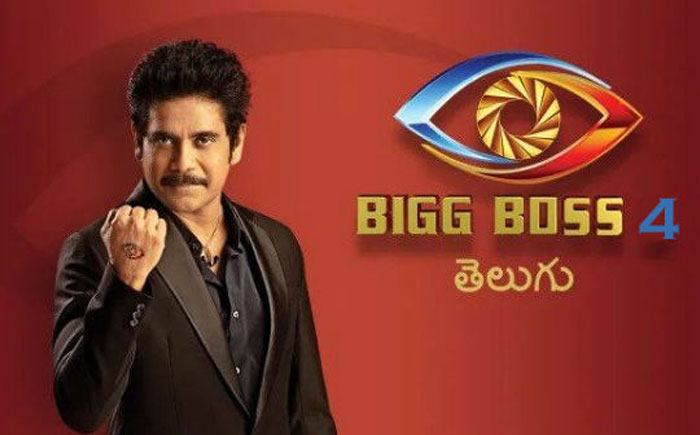 These Are Contestants of Bigg Boss 4?
